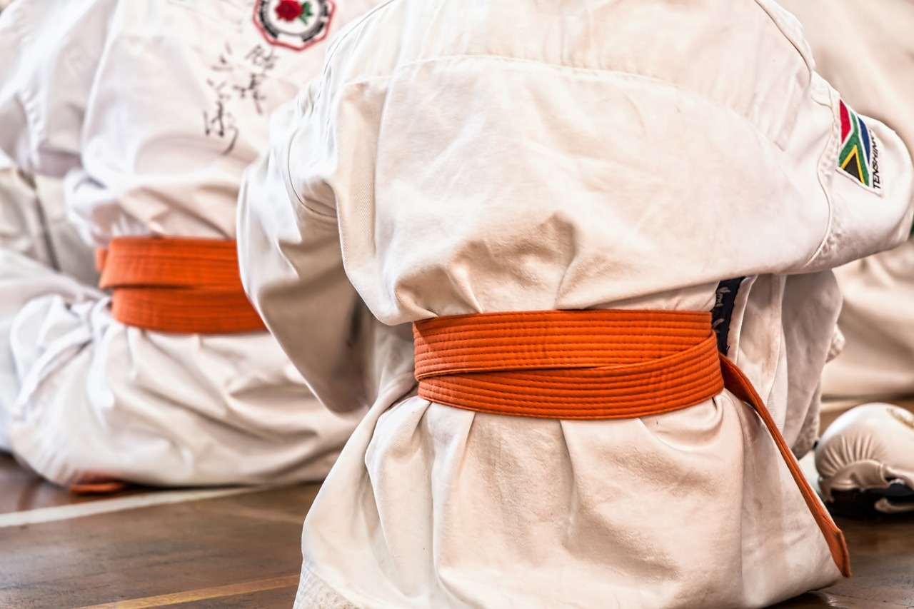 Karate Martial Arts Institute